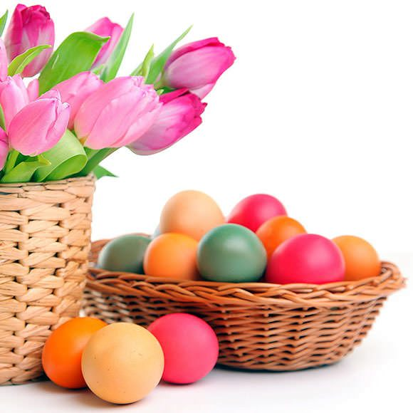 Pasqua Garden Shop Pasini