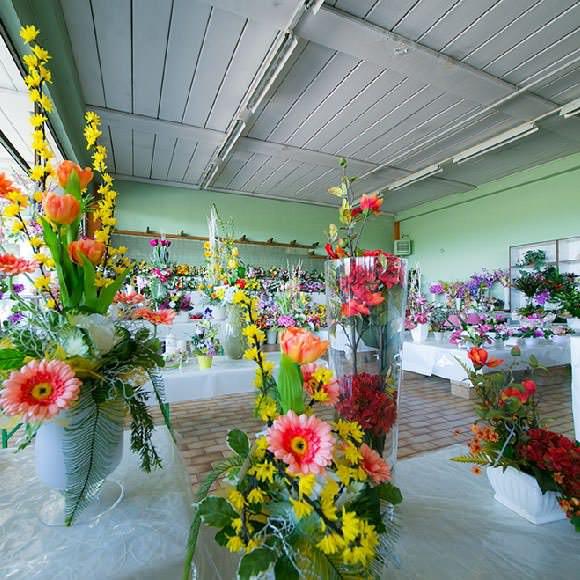 Show Room Garden Shop Pasini